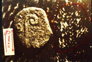 弗朗西斯所收藏的那枚銅幣和裹尸布上的銅幣影像